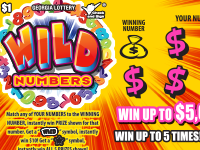 tn_lottery_wild_numbers